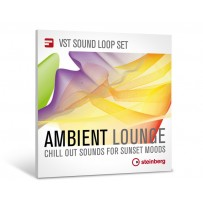Ambient Lounge - Steinberg